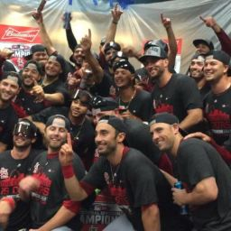 The 2015 St. Louis Cardinals: A True Team